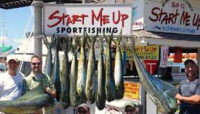Action Sportfishing