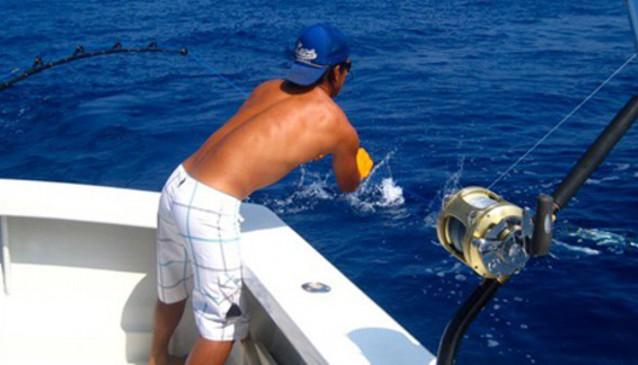 Alibi Sport Fishing