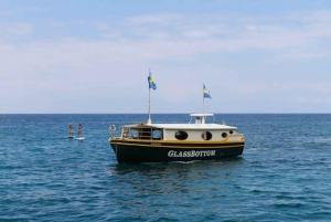 Big Island: 1-Hour Eco-Friendly Glass Bottom Reef Tour