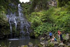 Big Island: Full Day Adventure through Kohala Waterfalls