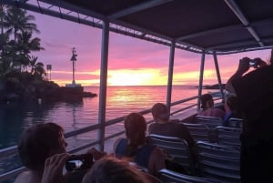 Big Island, Hawaii: Night Manta Ray Snorkel Experience