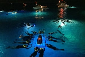 Big Island, Night Manta Ray Snorkel Experience