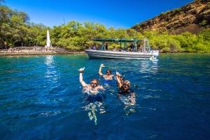 Big Island: South Kona Snorkeling and Coastline Exploration