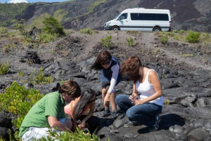 Big Island Twilight Volcano and Stargazing Tour