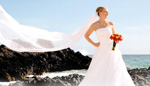 Blue Ocean Weddings
