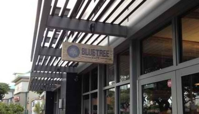 Blue Tree Cafe