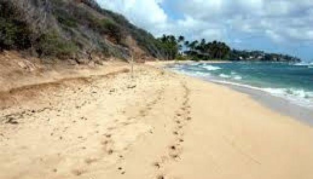 Diamond Head Beach Park