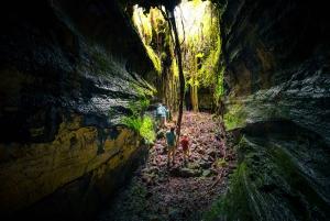 From Kona and Waikoloa: Intimate Volcano Discovery Tour