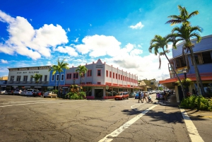 Hawaii: Private Guided Van Tour