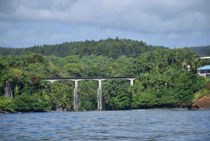 Hilo: 2-Hour Historic Hawaii Hamakua Cruise