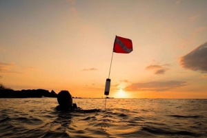 Hilo: Night Dive for Certified Divers