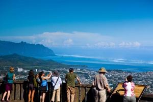 Honolulu: Oahu Sights and Bites Island Tour