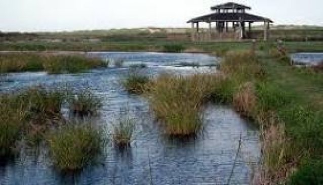 James Campbell National Wildlife Refuge