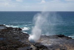 Kauai: Customized Luxury Private Tour