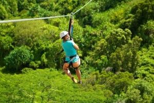 Kauai: Eco-Friendly 5 line Zipline Adventure in Poipu