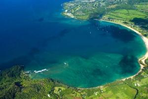 Kauai: Private Luxury Full Island Sightseeing Flight