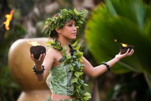 Kauai: VIP Island Dinner and Luau Kalamaku Show