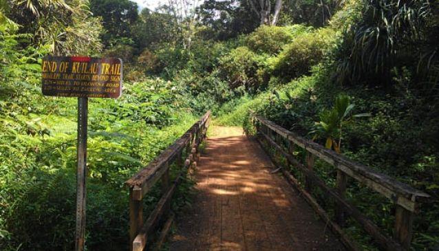 Kayak Kauai Kapaa
