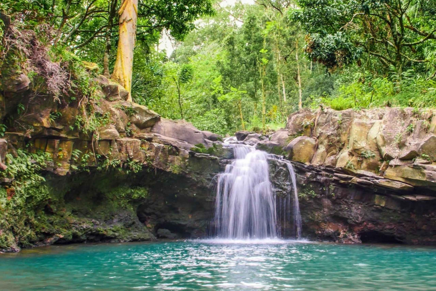 Maui: 5 Hour Waterfall & Rainforest Hike with Picnic Lunch ...