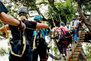 Maui: 7 Zip Lines and WWII Museum
