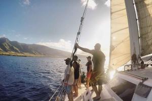 Maui: Catamaran Whale Cruise