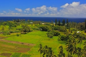 Maui: Full-Day Road to Hana Sightseeing Bus Tour