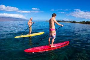 Maui: Makena Bay Stand-Up Paddle Tour