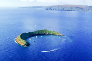 Maui: Molokini and Turtle Town Snorkel with Deli Lunch