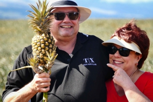 Maui: Pineapple Tour