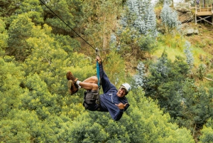Maui: Small-Group Waterfall Hike and Zip-line with Lunch