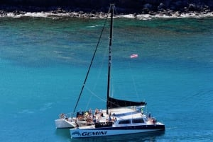 Maui: Whale Watching Tour from Kaanapali Beach