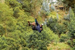 Maui: Zipline and Waterfall Hike