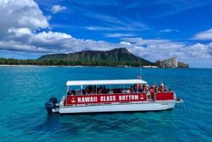 Oahu: Afternoon Glass Bottom Boat Tour in Waikiki