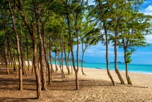 Oahu: Best of Hawaii Photography Tour from Waikiki