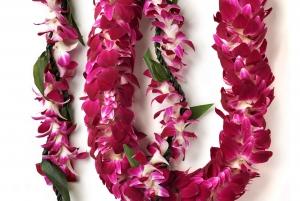 Oahu: Honolulu Airport (HNL) Honeymoon Lei Greeting