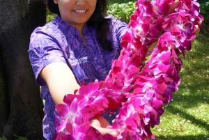 Oahu: Honolulu Airport (HNL) Traditional Lei Greeting