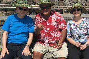 Oahu: North Shore Circle Island Small-Group Tour