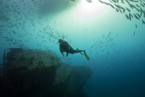 Oahu: Wreck & Reef Scuba Dive for Certified Divers