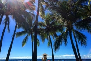 Pearl Harbor and Honolulu City Tour