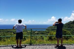 Private Hana Adventure Tour