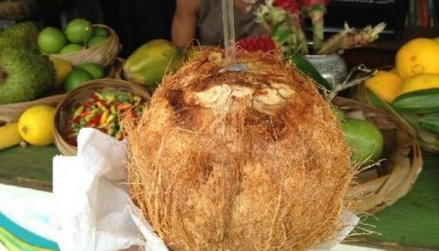 The Coconut Experience
