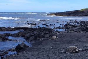 Ultimate National Park Tour from Waikoloa