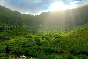 Waikiki: North Shore and Hanauma Bay Tour