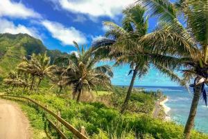 Waikiki: Oahu 120-Mile Full-Day Tour with Dole Plantation