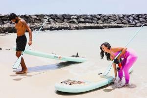 Waikiki: SUP Yoga Class