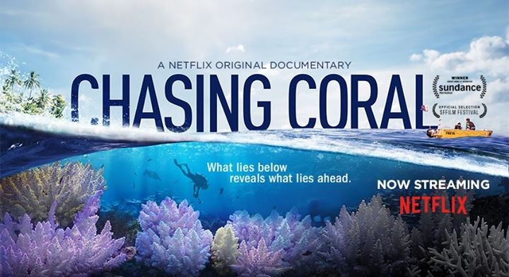 Chasing Coral Documentary Film