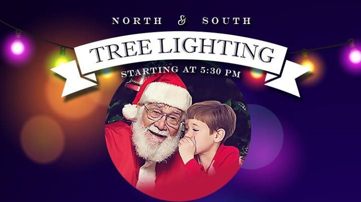 Fort Shafter South Tree Lighting