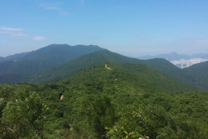 From Hong Kong City: The Dragon's Back Hiking Tour