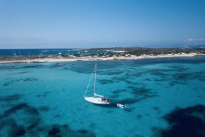 From Full-Day Sailing Tour to Formentera