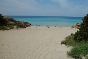 From Ibiza: Guided Excursion to Formentera
